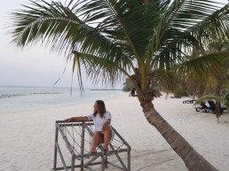 Malediven Sandstrand mit Palme